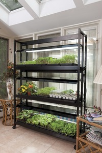 Image of Deluxe 3-Tier Light Garden