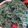 Image of Ripbor Organic Kale