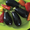 Image of Michal Organic Eggplant