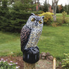 Image of Garden Defense Owl