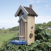 Image of Butterfly Habitat/Feeder