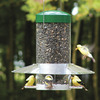 Image of Classic Hanging Feeder