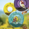 Image of Glass Bird Feeders