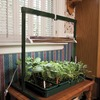 Image of 2' Table Top Jump Start Grow Light