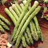 Image of Mary Washington Improved Asparagus