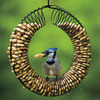 Image of Peanut Wreath Feeder