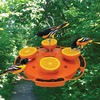 Image of Ultimate Oriole Feeder