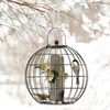 Image of Mixed Globe Feeder